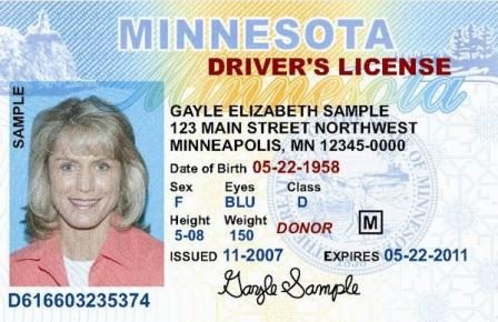 MN drivers liscense